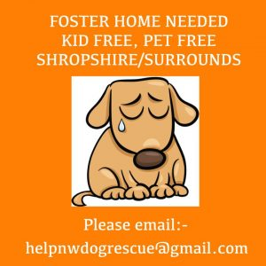 Foster required Shropshire